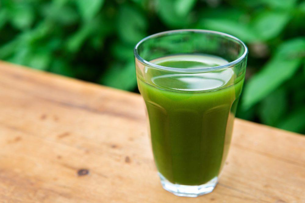ミドリムシ含有量比較(サプリ・緑汁編)