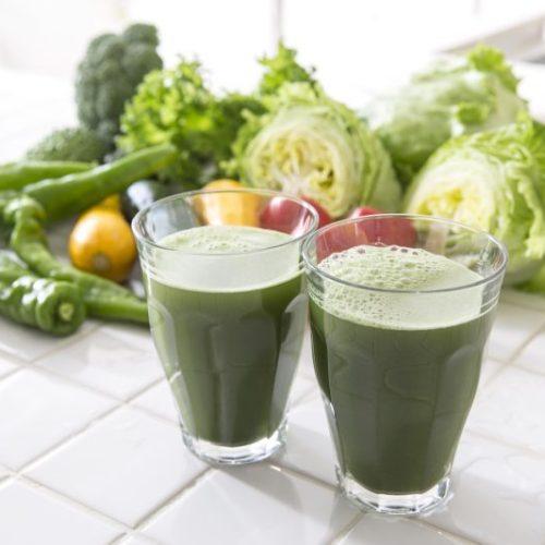 青汁とミドリムシ緑汁の比較!どちらがおすすめ?
