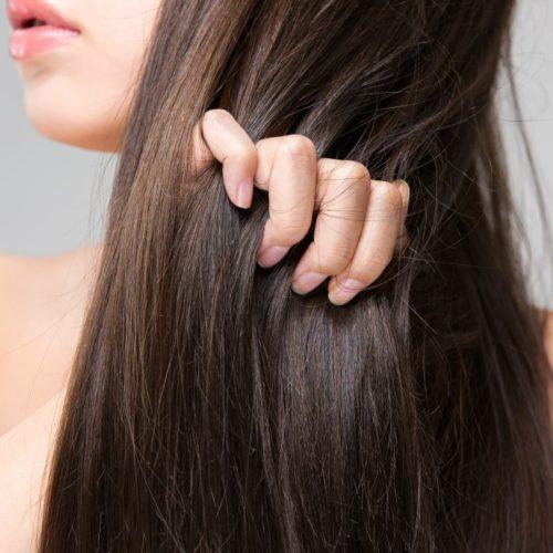 ミドリムシで抜け毛改善!?発毛に役立つ栄養素とは