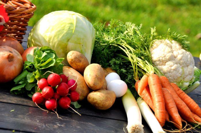 効果② 基礎代謝をアップさせられる栄養素が補充できる