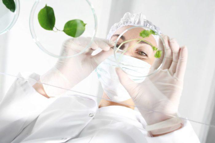放射性物質を除去できる植物や藻類の研究もされている